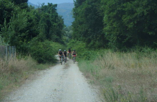 Mt. Biking route 8  Biking wandering in the Pinios river delta and the  river s mouth to the Aegean sea. Pinios river delta 2d085e1429d